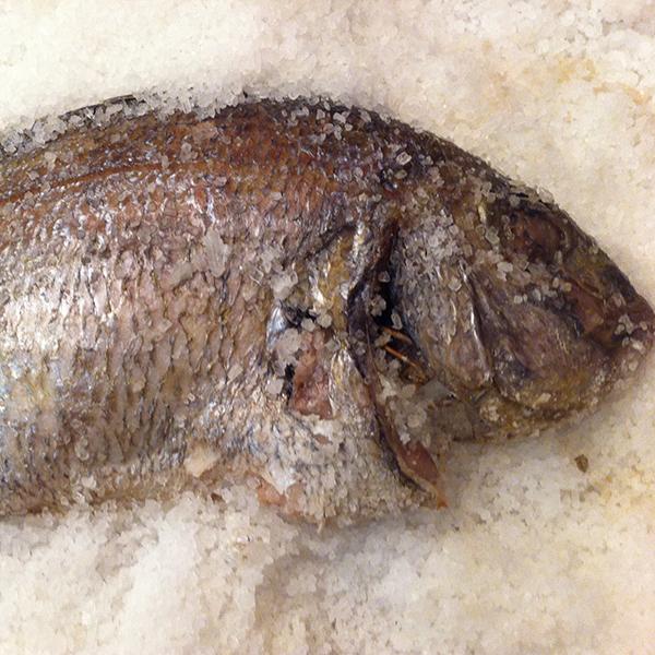 recepta-peix-a-la-sal