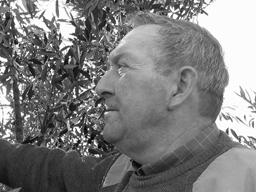 oli-i-olives-la-gaeta